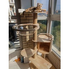 고양이선반 원목캣타워 캣휠 일체형 사계절 공통 원목캣타워, D.서양식145cm개