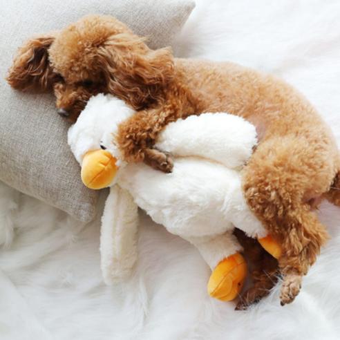 오리 삑삑이 인형 강아지 장난감